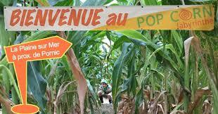partenaire pour la location de vélos à SAINT MICHEL CHEF CHEF pour aller au labyrinthe de maïs pop corn à la Plaine Sur Mer